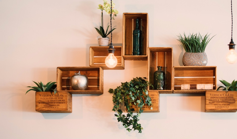 wooden shadow boxes on wall with small plants decorating them and light bulbs hanging down